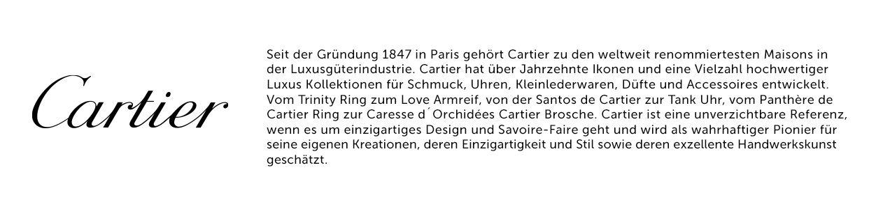 CARIER Text und Logo