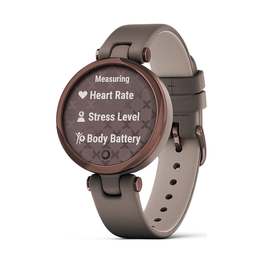 Garmin Smartwatch Lily 010-02384-B0