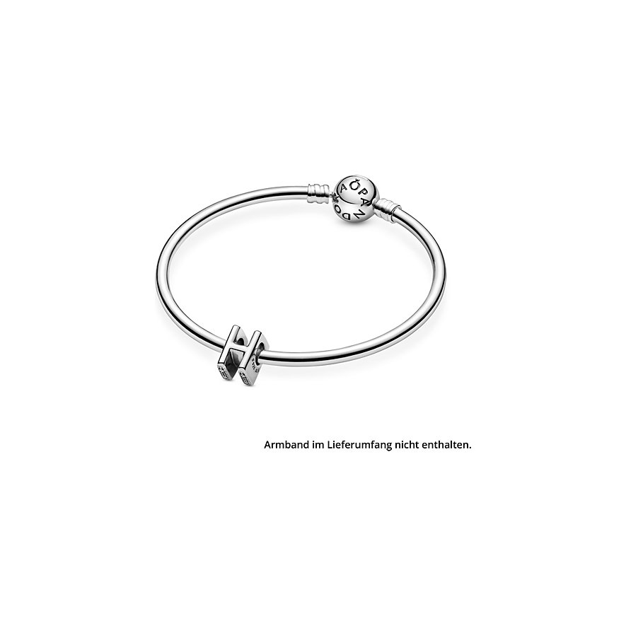 Pandora Charm ID 797462