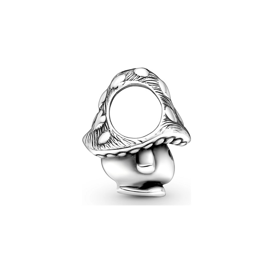Pandora Charm Moments 799528C01