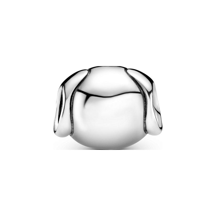 Pandora Charm Passions 791707