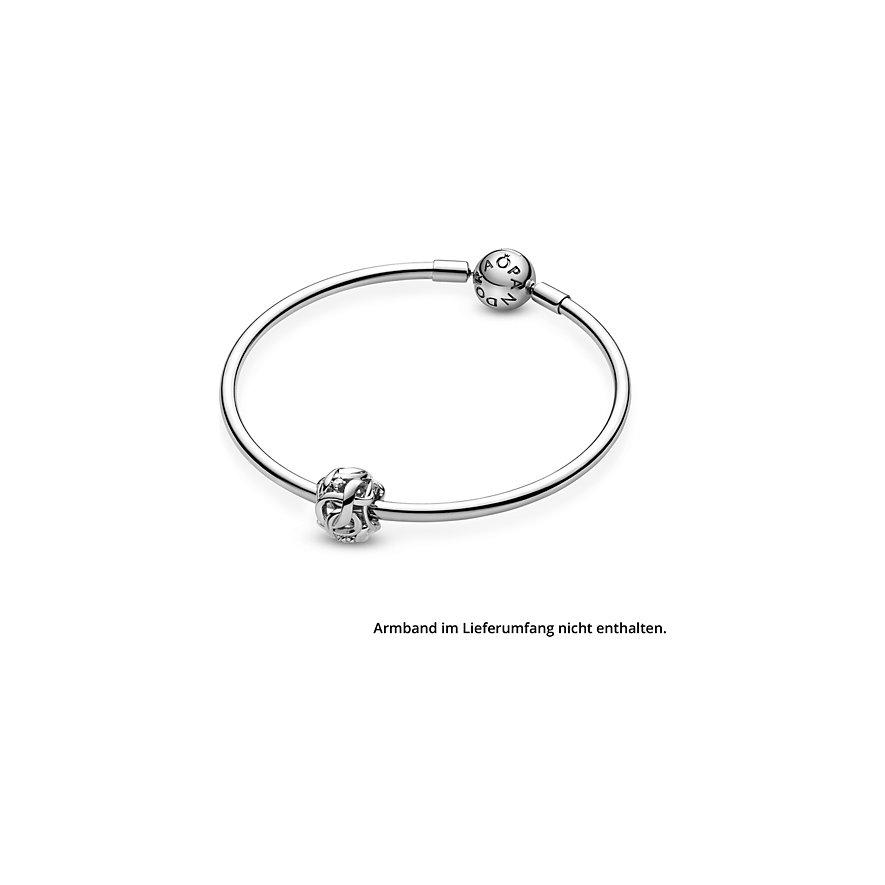 Pandora Charm Passions 798824C01