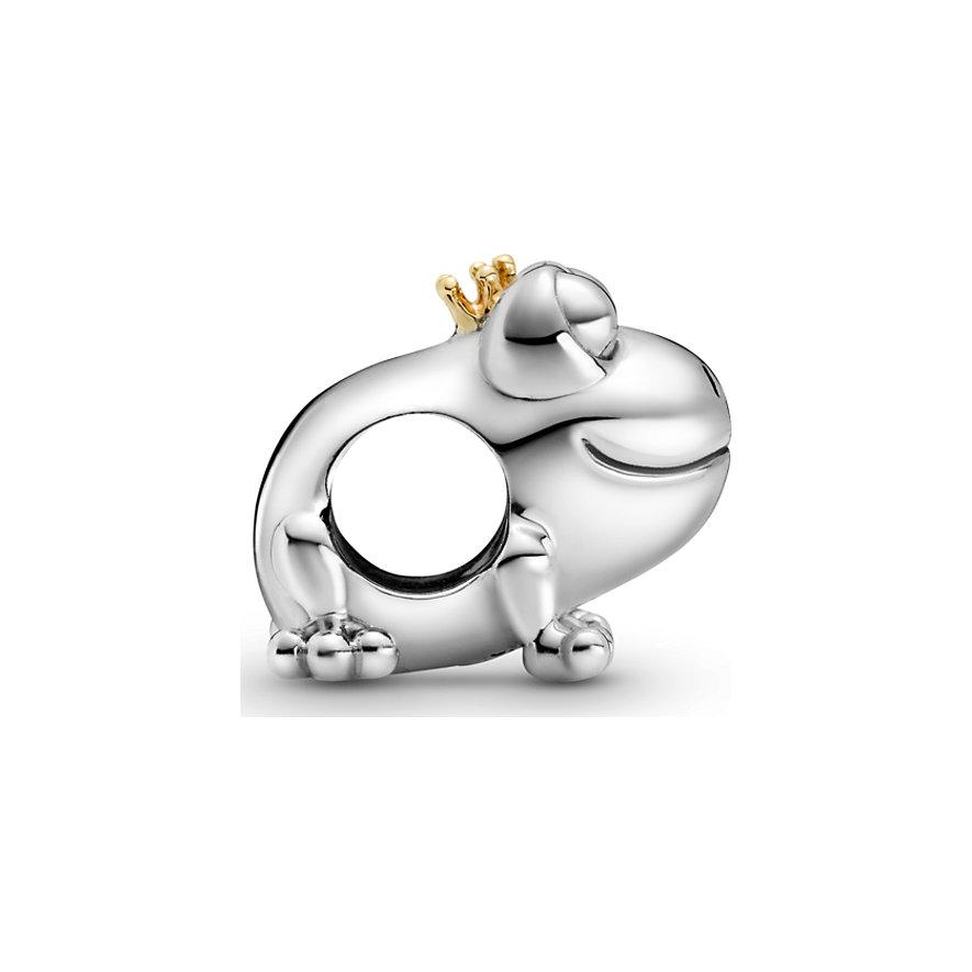 Pandora Charm Passions 799342C00