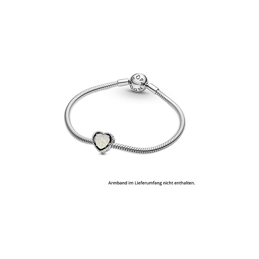 Pandora Charm People 799413C01