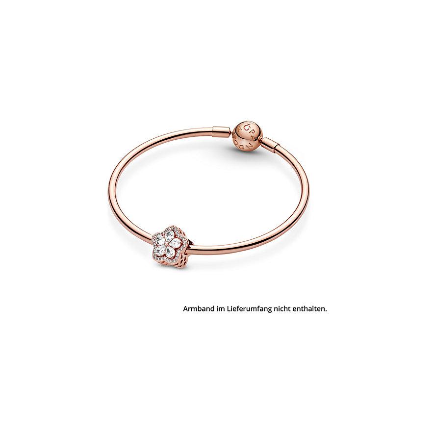Pandora Charm Timeless 789224C01
