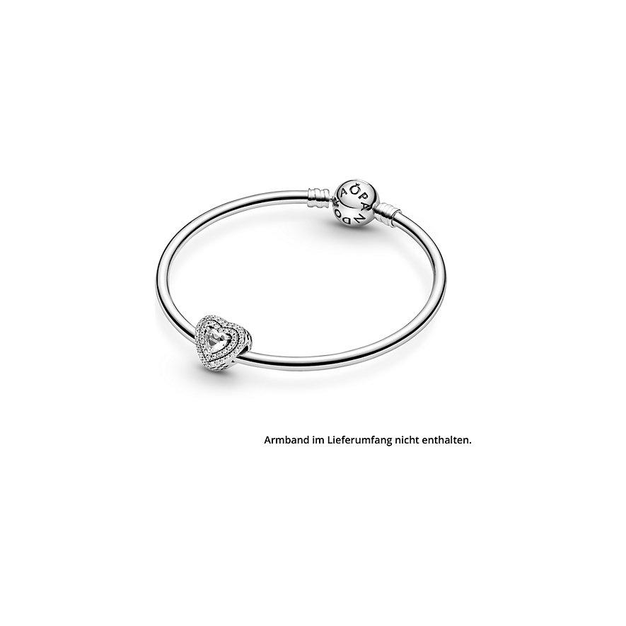 Pandora Charm Timeless 799218C01