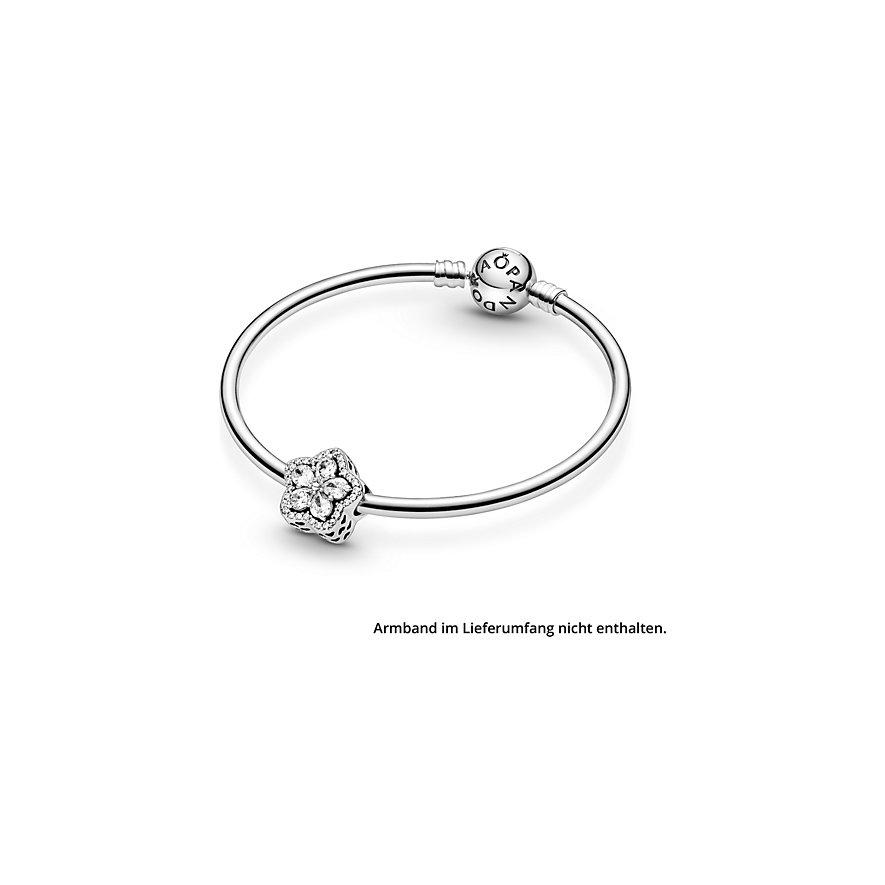 Pandora Charm Timeless 799224C01