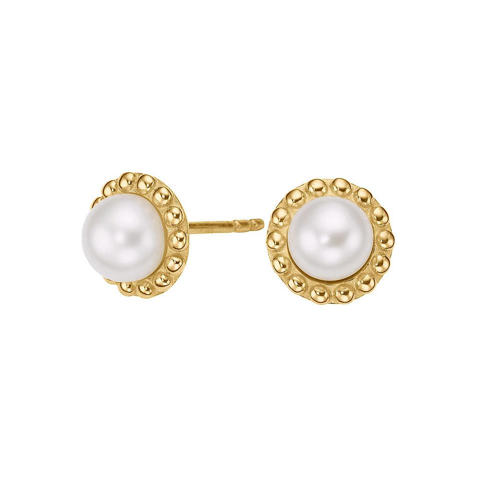 Perlen ohrstecker  CHRIST Pearls Ohrstecker 85670557 bei CHRIST.de bestellen